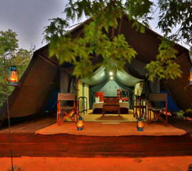 Wild Safari and Camping sites