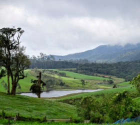 Nuwara Eliya Central Highlands